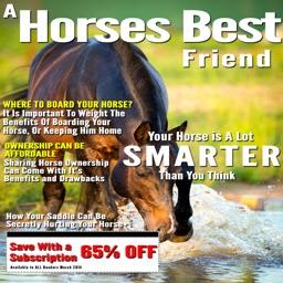 A Horses Best Friend