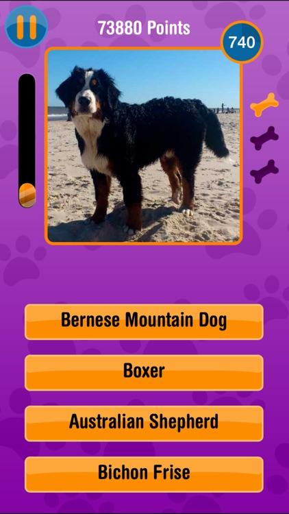 Guess The Dog Breed Free screenshot-3