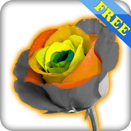 Photo Magic free