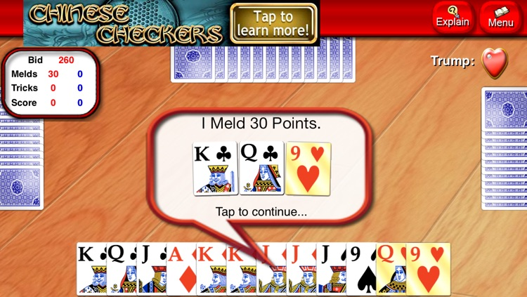 Pinochle Lite screenshot-2