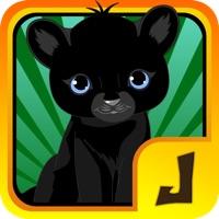 Codes for Baby Jaguar Jungle Sky Dash : Beyond the Rescue Hack