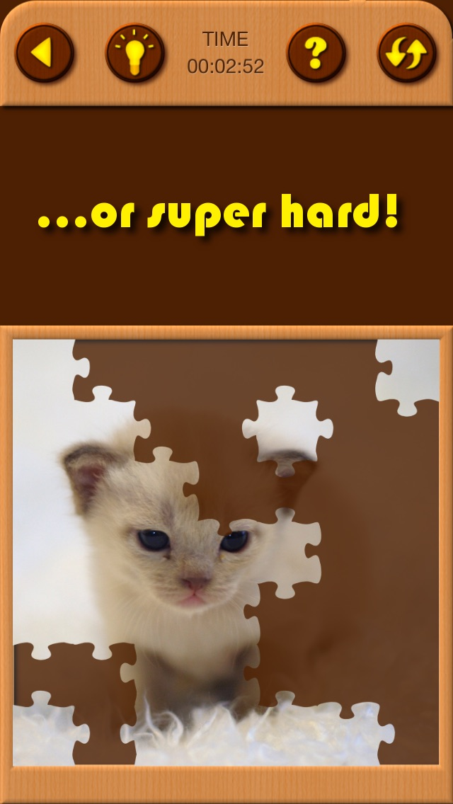 Cat Kitten Kitty Pet Baby Animal JIgsaw Puzzle Games for Girls who love educational memory learning puzzles for kids and toddlers Screenshot