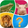 点击获取Word Pic Quiz Animals - guess favorites from the ocean, jungle, farm and pets