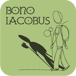 Camino de Santiago - Bono Iacobus
