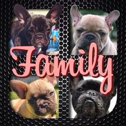 Frenchie Family - French Bulldog Pack Builder