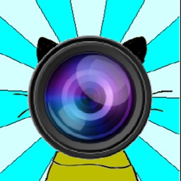 Looking Animals Camera