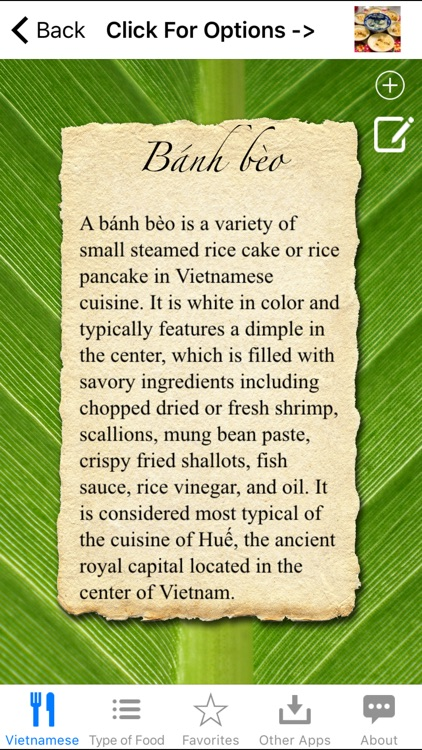 Guide To Vietnamese Food