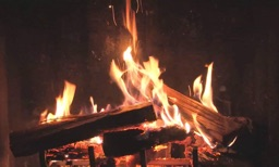 Real Fireplaces HD