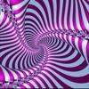 Optical Illusions Info Kit