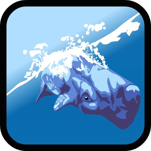 Dolphin & whale show game for kids 6 year old free iOS App