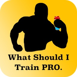 What Should I Train? Pro