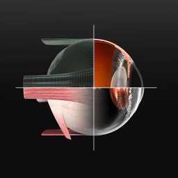 Sight Selector Premium