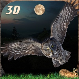 Wild Owl Flying Simulator 3D
