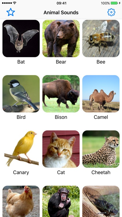 Animal Sounds Pro - Nature Voice Effects Simulator