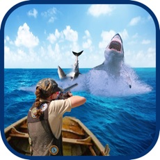 Activities of Angry Shark Shooter