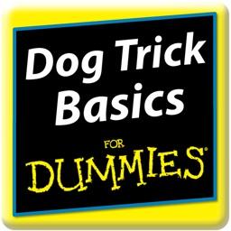 Dog Trick Basics For Dummies