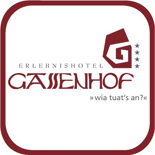 Erlebnishotel Gassenhof
