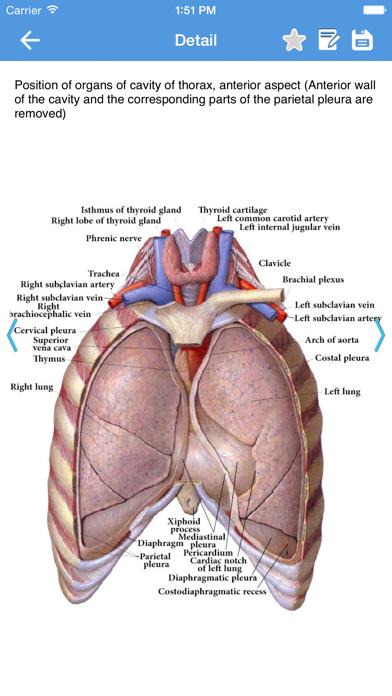 Human Anatomy 2017 screenshot two