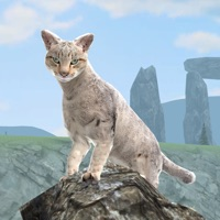 Codes for Clan Of Cats Hack