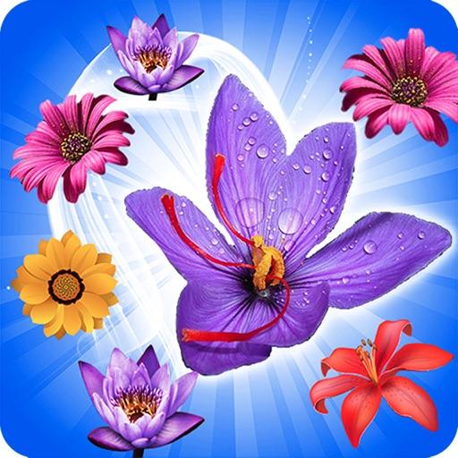 Garden Blossom Crush Mania iOS App