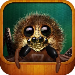SpiderFRIEND  - virtual 3D spider pet for kids