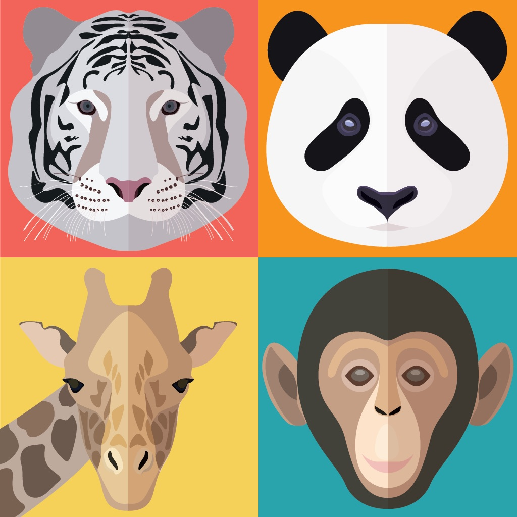 TOY - ZOO Animals And Birds Flash Cards - Free PreSchool