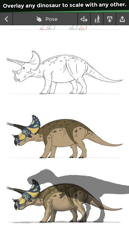 Pose & Draw Dinosaurs