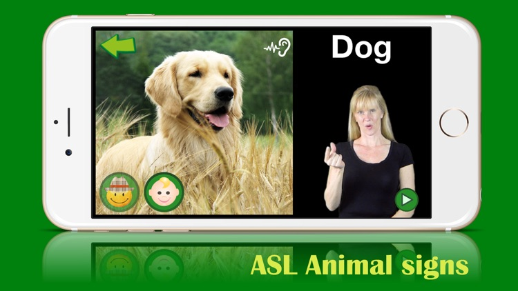 ASL Animals