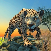 Codes for Clan Of Leopards Hack