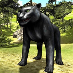 Angry Panther Attack 3D - Wildlife Carnivore Simulation Game