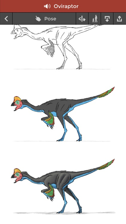 Pose & Draw Dinosaurs screenshot-4