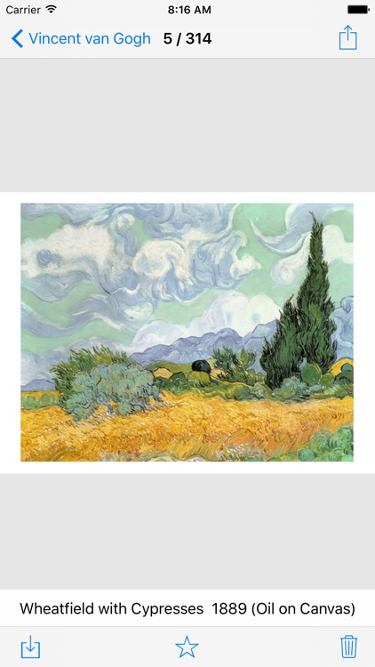Vincent van Gogh 314 Paintings - Pro