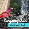 Yangmingshan National Park Guide