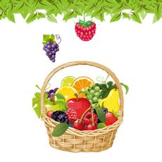 Activities of Basket Fruits