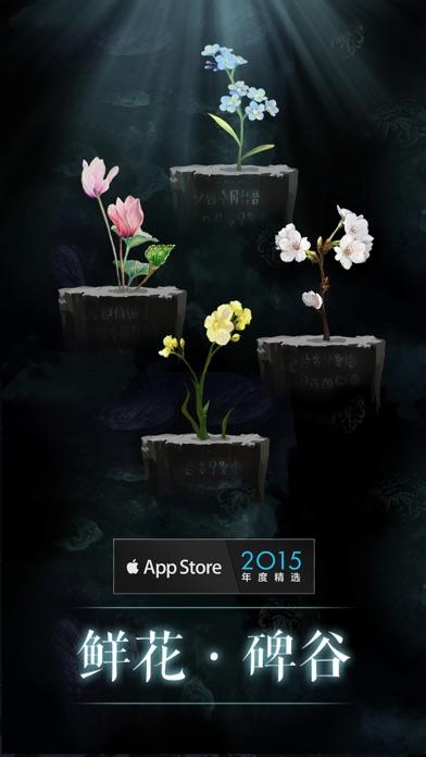 万物生长:一株植物的奇妙旅程
