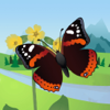 Schmetterlinge ID: Ein Naturführer von iSpiny