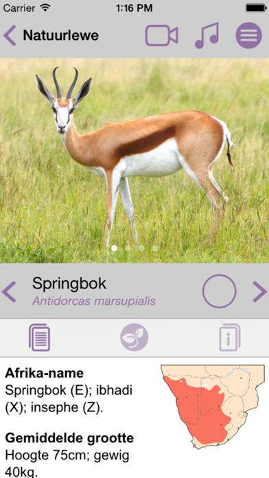 Sasol Natuurlewe vir Beginners (Lite): Blitsfeite, foto's en video's van 46 Suider-Afrikaanse diereのおすすめ画像3