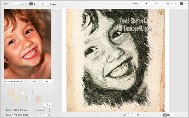 Facial sketch program favorite