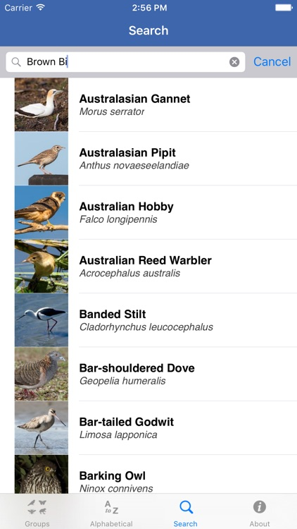Field Guide to NSW Fauna