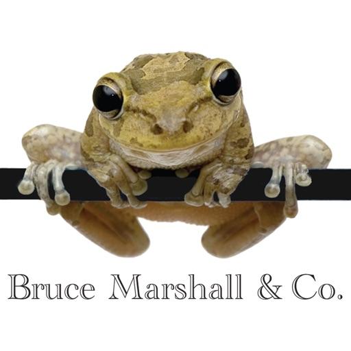 Bruce Marshall & Co