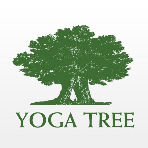 Yoga Tree SF