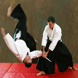 Learn Aikido Techniques