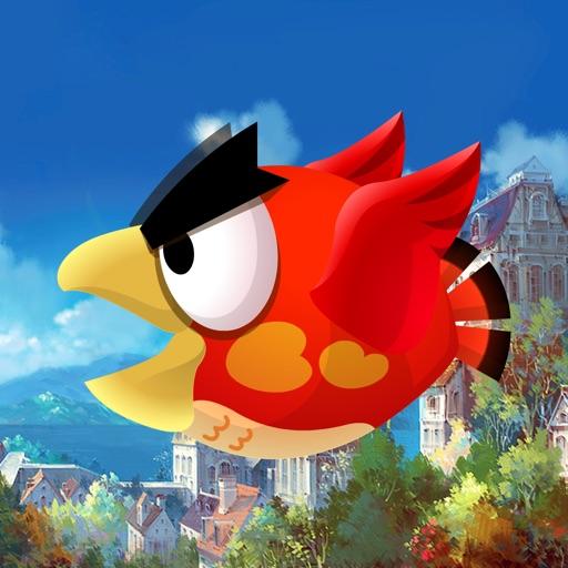 我的鸟世界