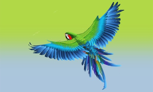 Parrots Master