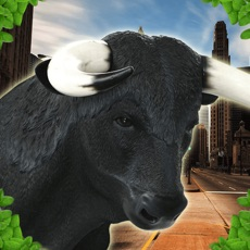 Activities of Crazy Bull Simulator