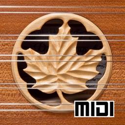 D550 MIDI - Hammered Dulcimer MIDI Controller - Dusty Strings Edition