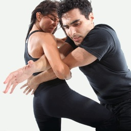 Learn Krav Maga Techniques