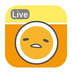 Cubic Live for Gudetama