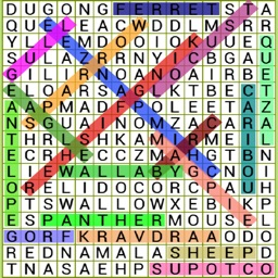 Word Search Pro Puzzle
