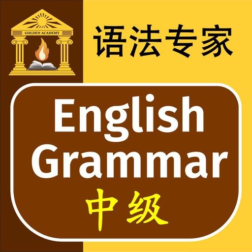语法专家 : 英语语法 中级